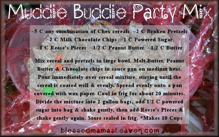 Muddie Buddie Party Mix